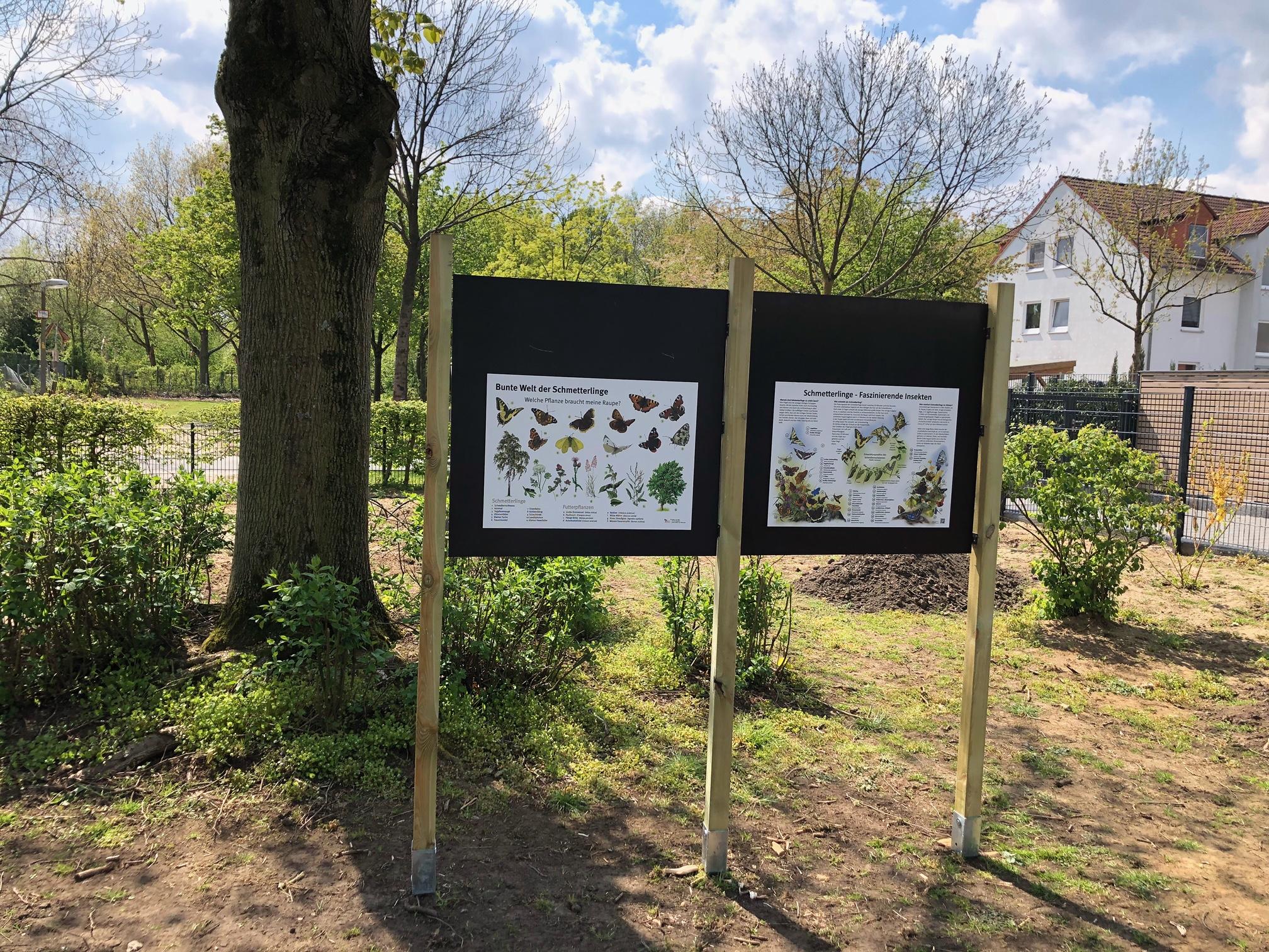 Schmetterlingsoase Overbergstr. - 3